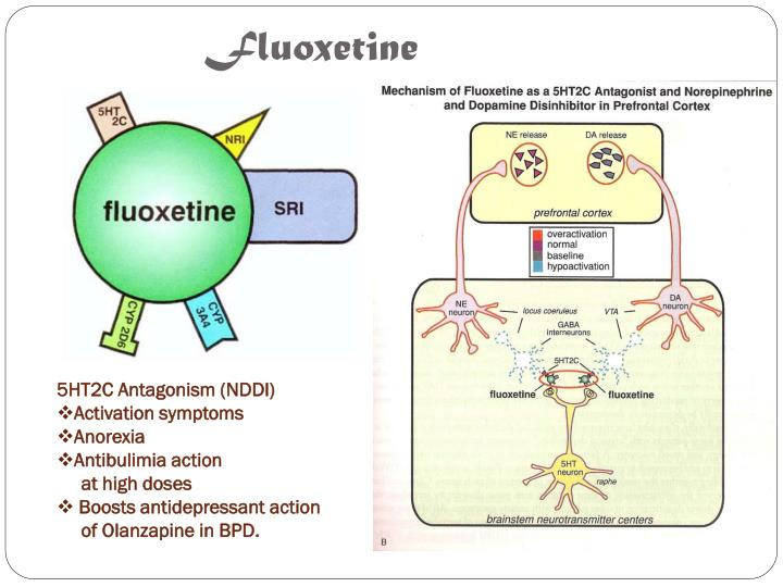 Fluoxetine Aggitation