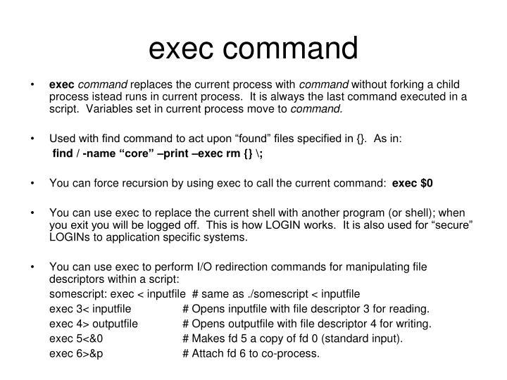 exec command