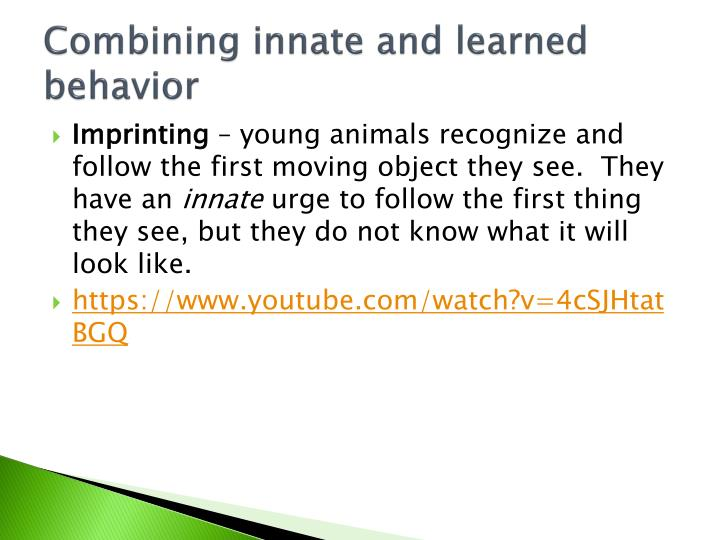 Combining innate and learned behavior