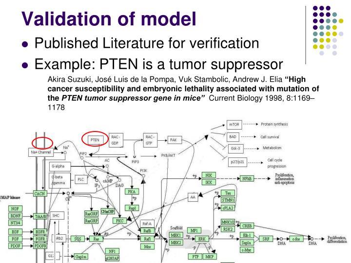 Validation of model