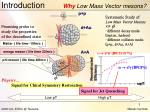 introduction why low mass vector mesons