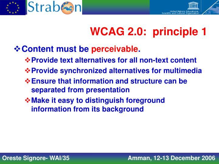 WCAG 2.0:  principle 1