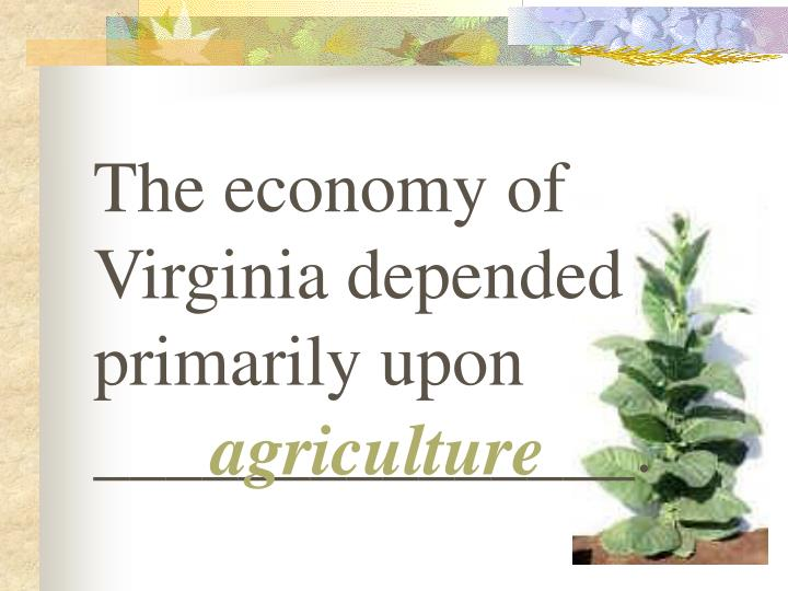 The economy of Virginia depended primarily upon _______________.