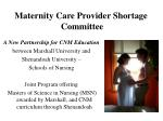 maternity care provider shortage committee3
