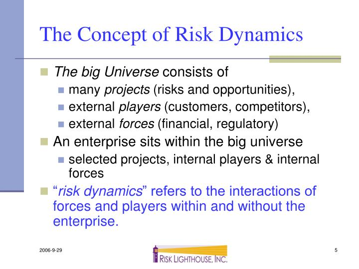 The Concept of Risk Dynamics