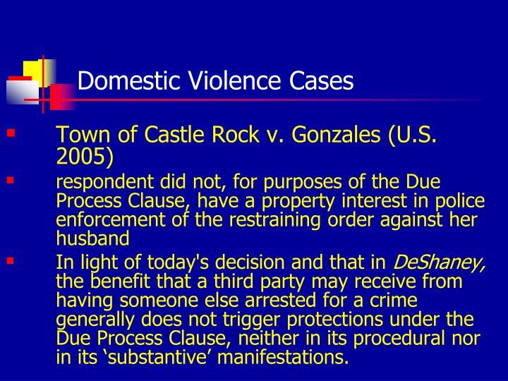 Domestic Violence Cases