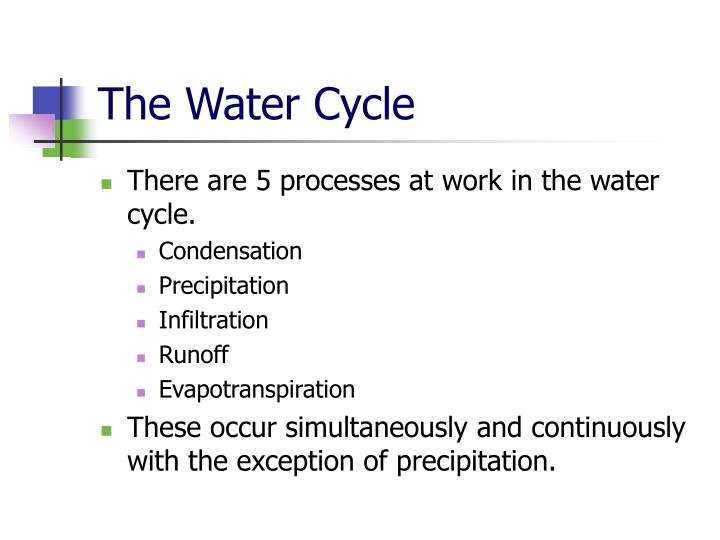 The water cycle1