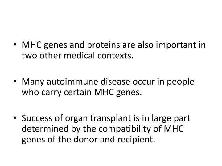 MHC genes and proteins are also important in two other medical contexts.