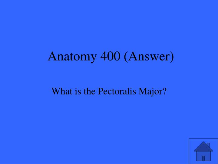 Anatomy 400 (Answer)