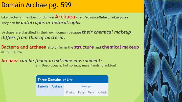 Domain Archae pg. 599