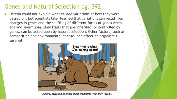 Genes and Natural Selection pg. 392