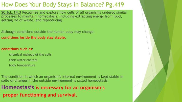 How Does Your Body Stays in Balance? Pg.419