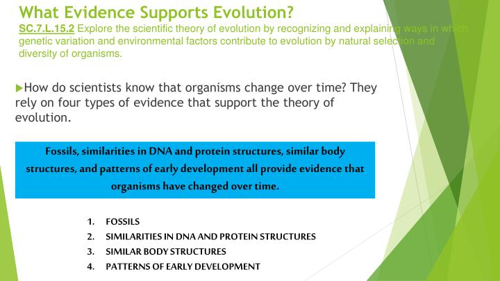 What Evidence Supports Evolution?