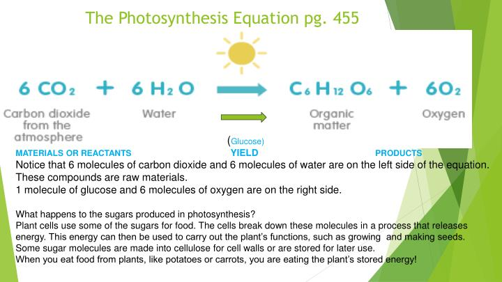 The Photosynthesis Equation pg. 455