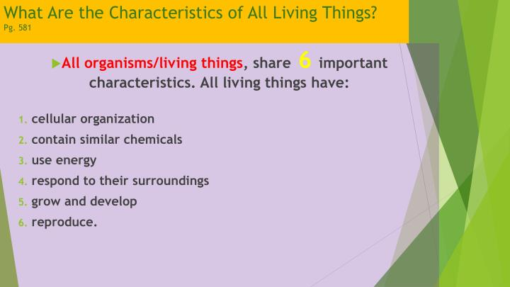 What Are the Characteristics of All Living Things?