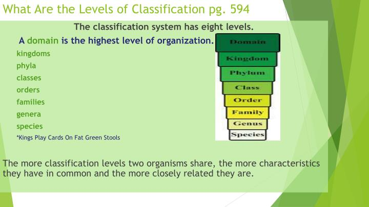 What Are the Levels of Classification pg. 594
