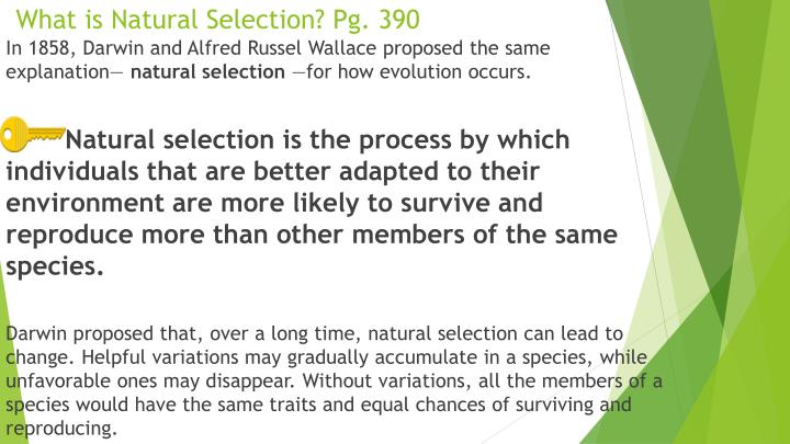 What is Natural Selection? Pg. 390