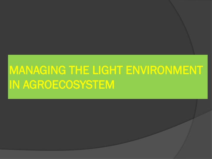 MANAGING THE LIGHT ENVIRONMENT IN AGROECOSYSTEM