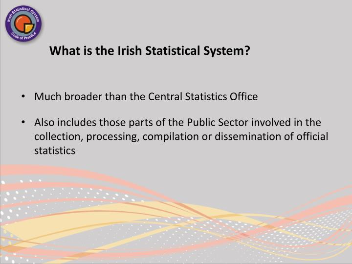 What is the Irish Statistical System?