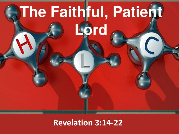 the faithful patient lord n.
