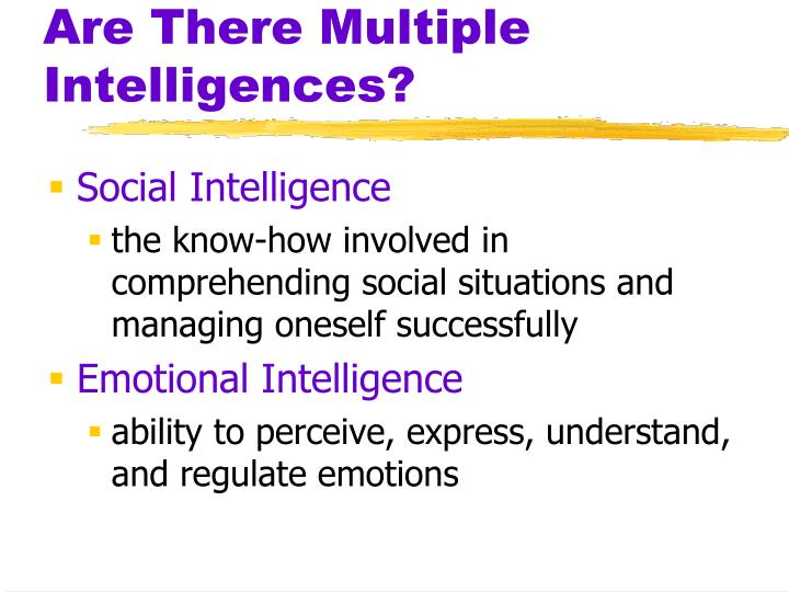 Are There Multiple Intelligences?