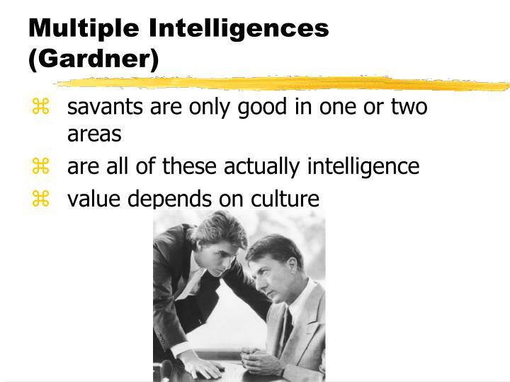 Multiple Intelligences (Gardner)