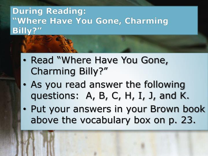 where have you gone charming billy essay questions