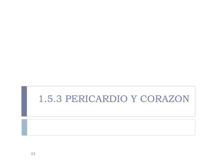 1.5.3 PERICARDIO Y CORAZON