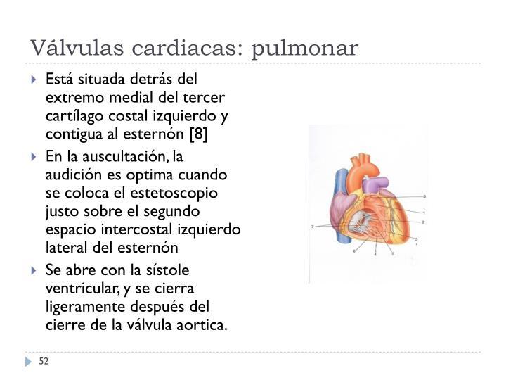 Válvulas cardiacas: pulmonar