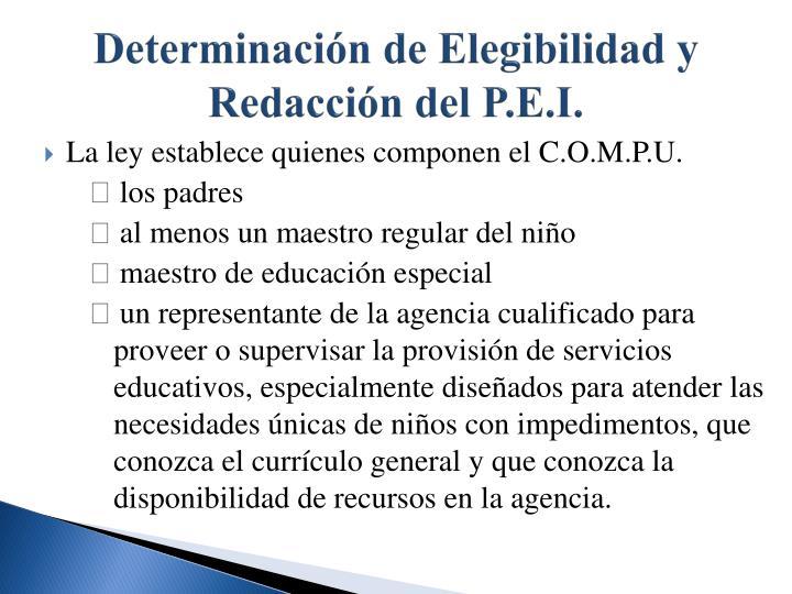 Determinación de Elegibilidad y Redacción del P.E.I.