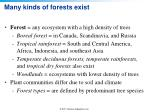 many kinds of forests exist