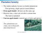 plantation forestry