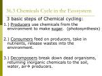 36 3 chemicals cycle in the ecosystem