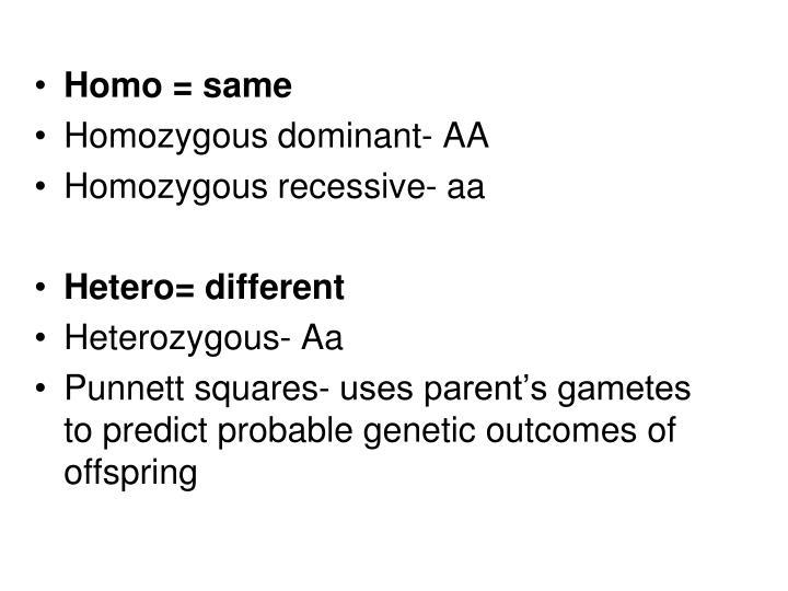 Homo = same