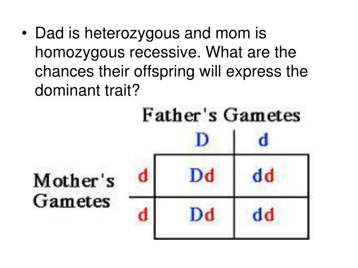 Dad is heterozygous and mom is homozygous recessive. What are the chances their offspring will express the dominant trait?