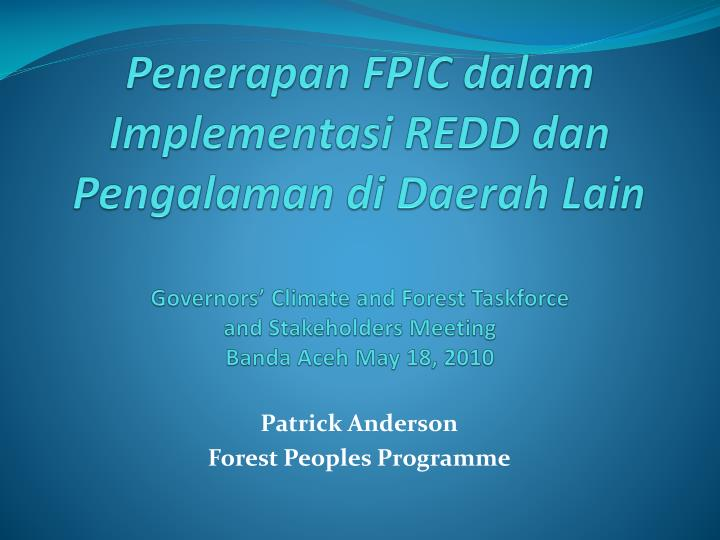 patrick anderson forest peoples programme n.