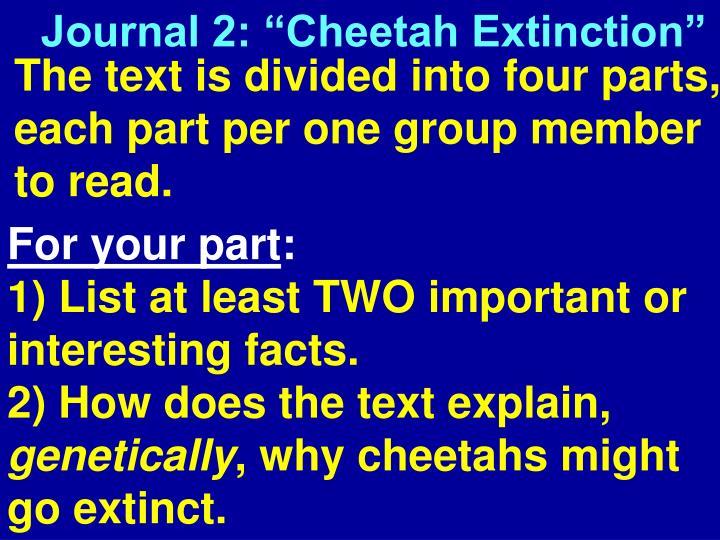 "Journal 2: ""Cheetah"