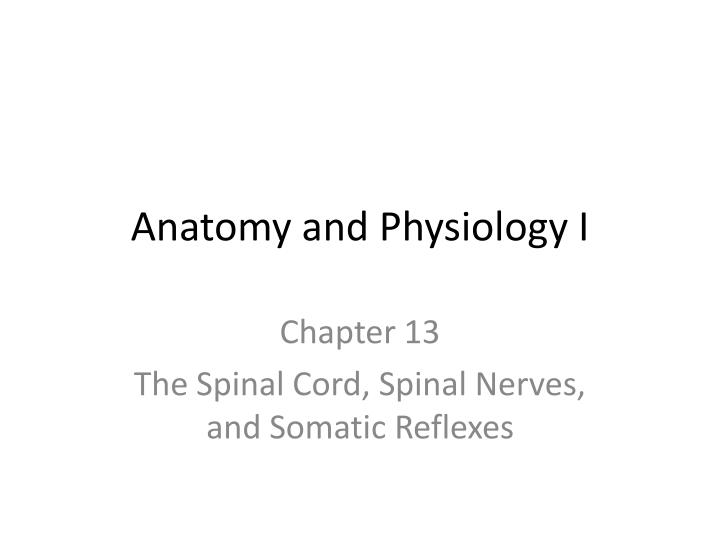 PPT - Anatomy and Physiology I PowerPoint Presentation - ID:3062779