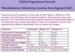 testa programme portrait wombledown university creative arts degree cad