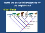 name the derived characteristic for the amphibians
