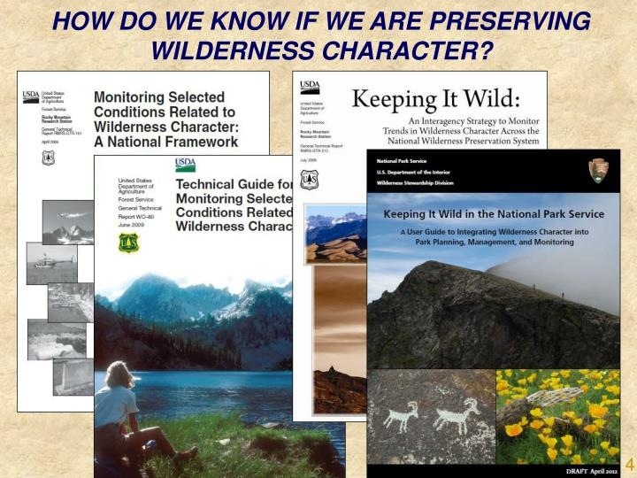 HOW DO WE KNOW IF WE ARE PRESERVING WILDERNESS CHARACTER?
