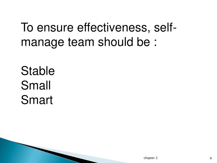 To ensure effectiveness, self-manage team should be :