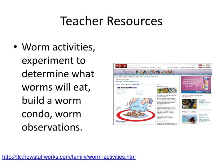 Worm activities, experiment to determine what worms will eat, build a worm condo, worm observations.
