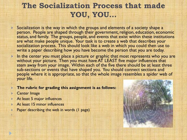 the socialization process that made you you n.