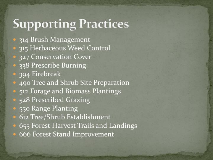 Supporting Practices
