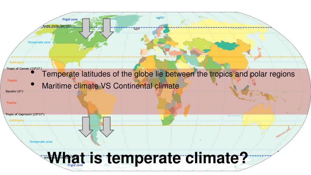 PPT - Temperate Climate PowerPoint Presentation - ID:3065220