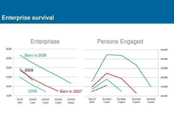 Enterprise survival