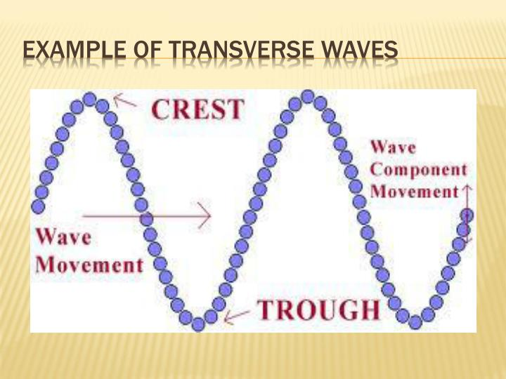 PPT - Waves, Sound, and Light PowerPoint Presentation - ID:3065451