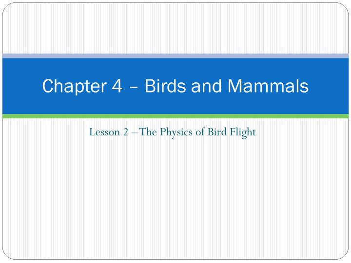 chapter 4 birds and mammals n.