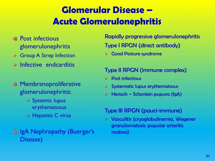relationship between group strep glomerulonephritis